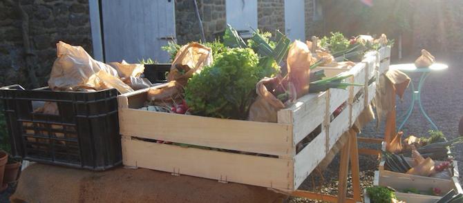 Paniers de légumes bio : Rencontre avec les producteurs le samedi 10 mars à 10h30 au bar Le Ticia