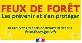 Feux de forêt : préservons la forêt et les espaces naturels grâce aux bons comportements !